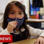 COVID-19 and the schools crisis – BBC News